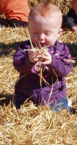 My brave daughter exploring in the hay -- and having a great time!